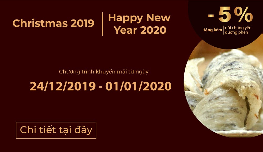 Christmas 2019-New year 2020